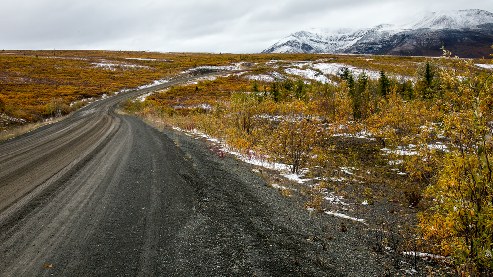 The Dempster cuts through the fall colours on the tundra, seemingly going on forever.