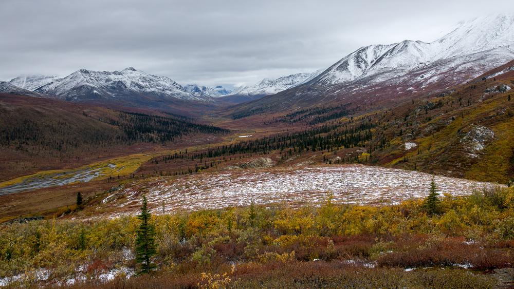 Yukon D13-4.jpg