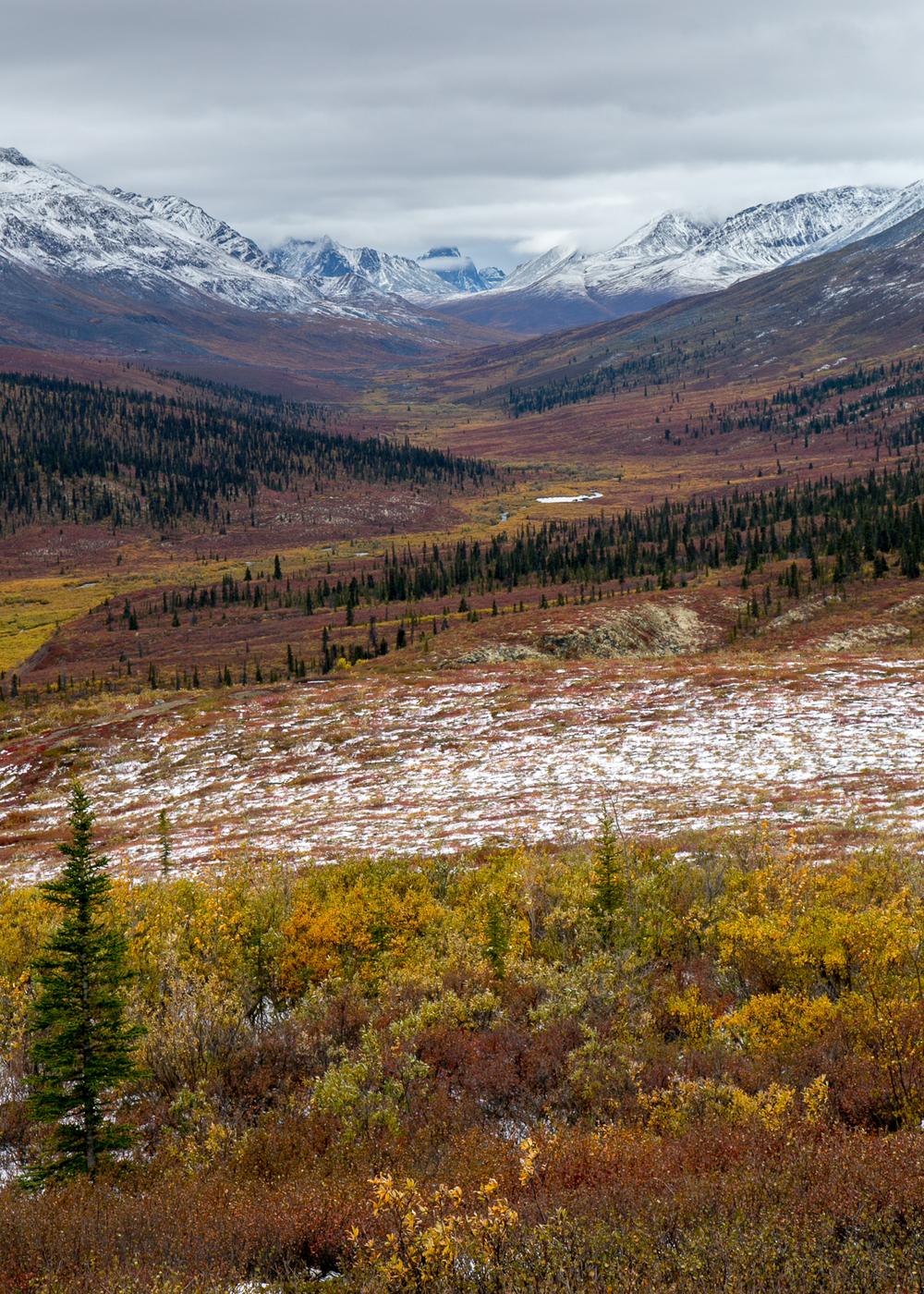 Yukon D13-5.jpg