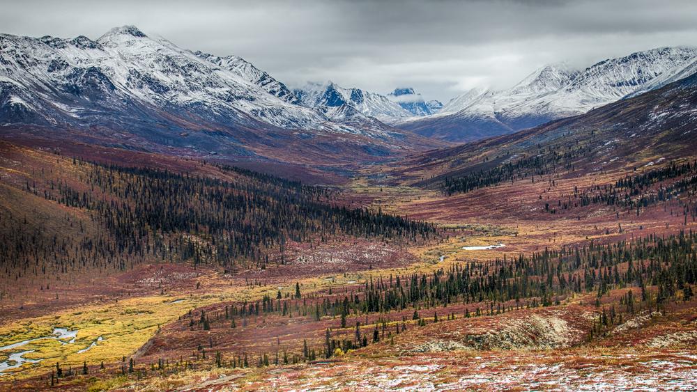 Yukon D13-7.jpg