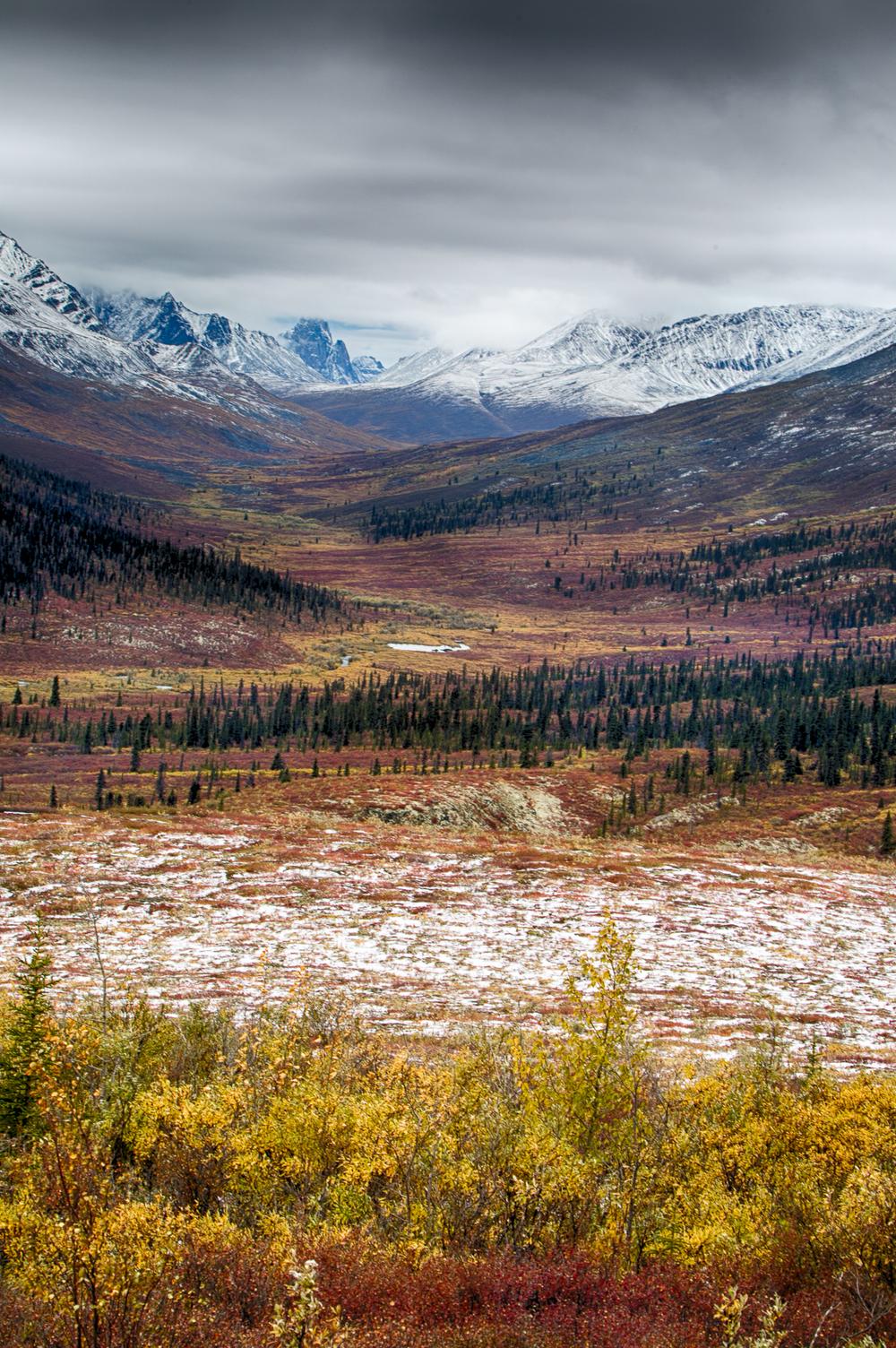 Yukon D13-16.jpg