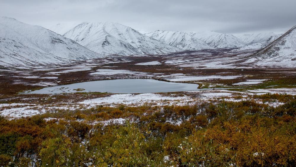 Yukon D13-19.jpg