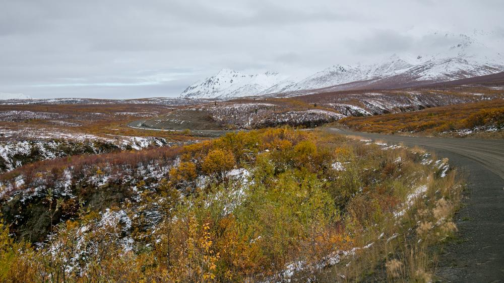 Yukon D13-22.jpg