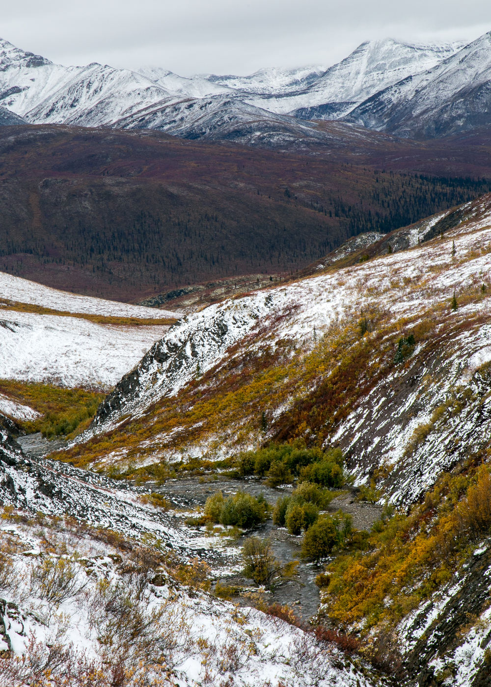 Yukon D13-26.jpg