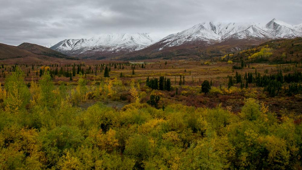 Yukon D13-29.jpg