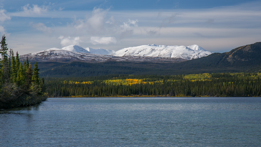 Fall colours and snow capped peaks.