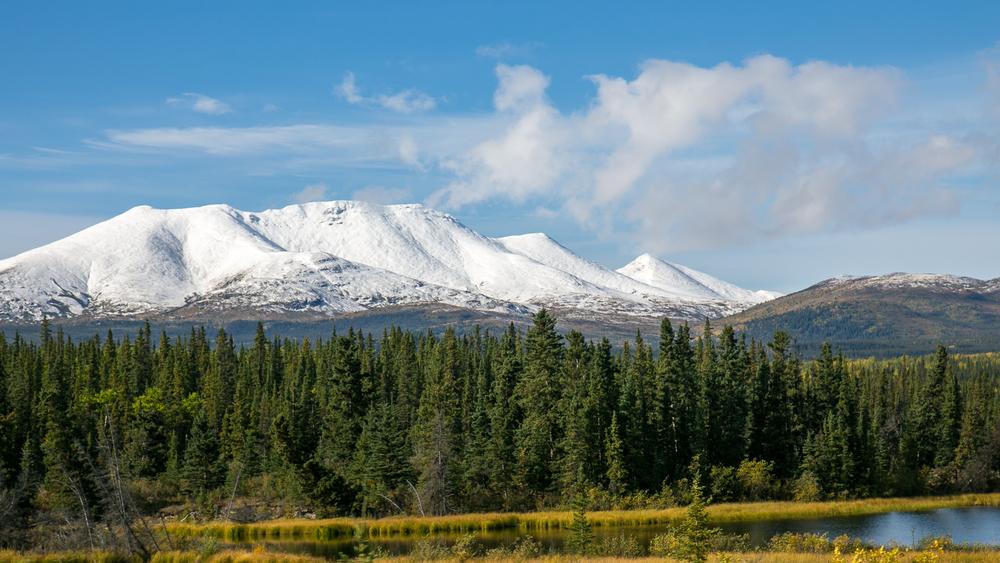 Yukon D14-13.jpg