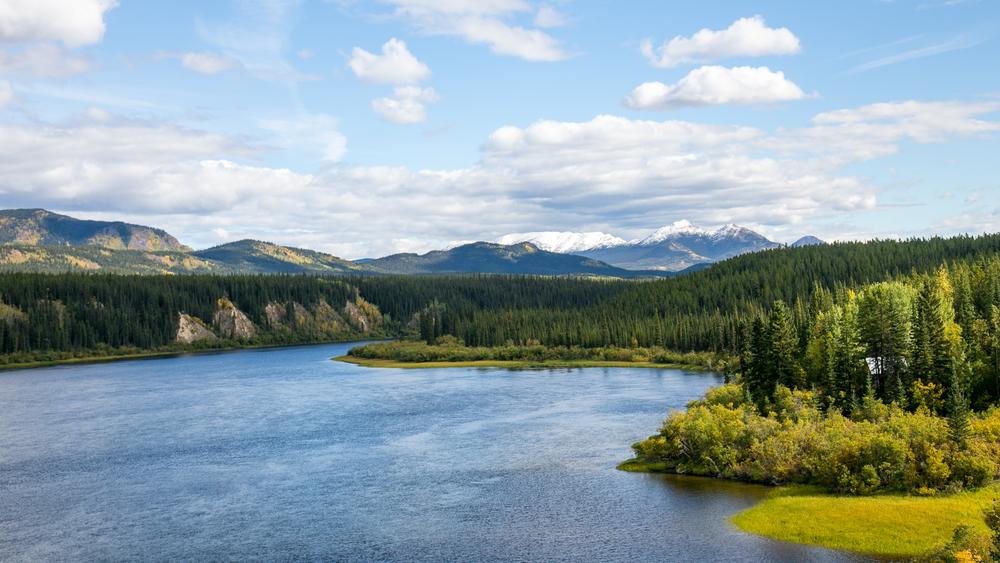Yukon D14-23.jpg