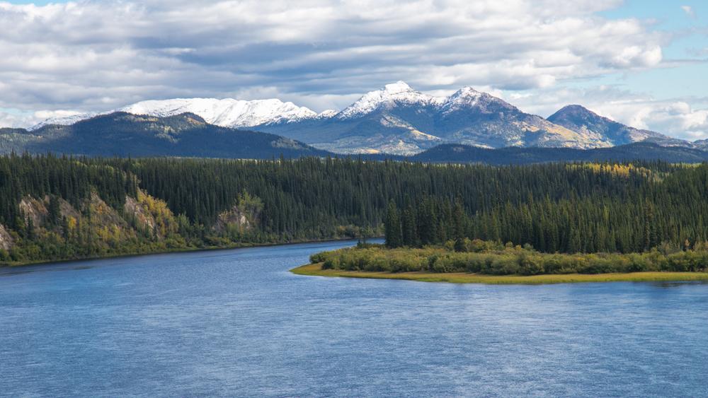 Yukon D14-24.jpg
