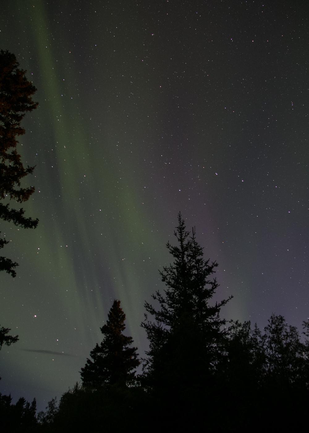 Yukon D14-36.jpg