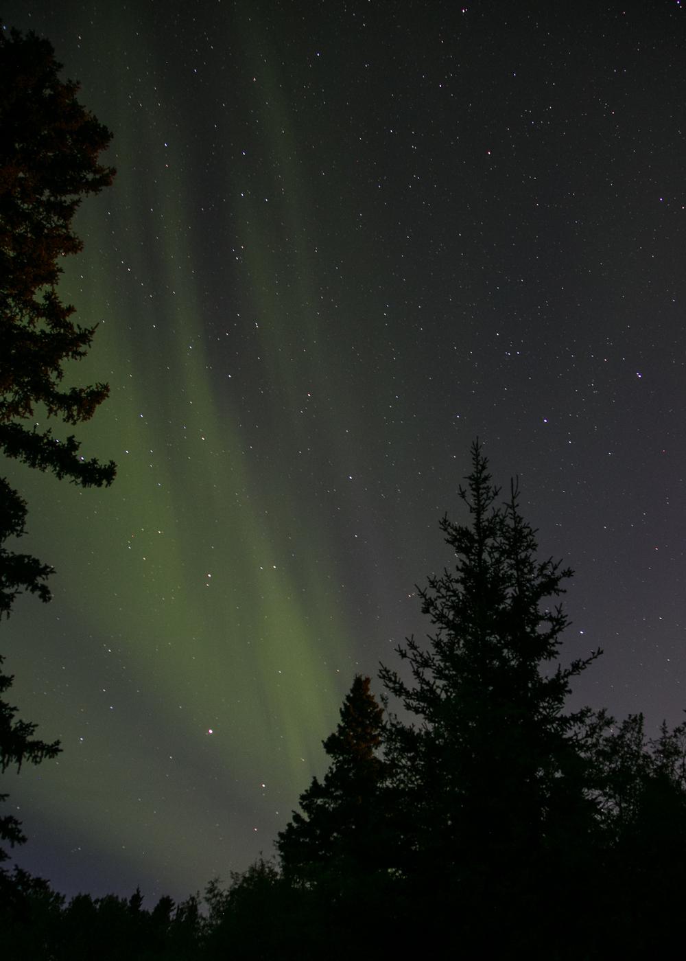 Yukon D14-38.jpg