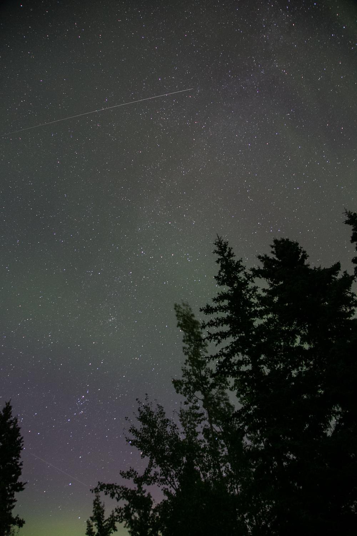 Yukon D14-37.jpg