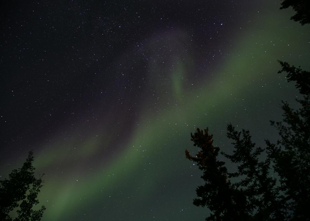 Yukon D14-41.jpg