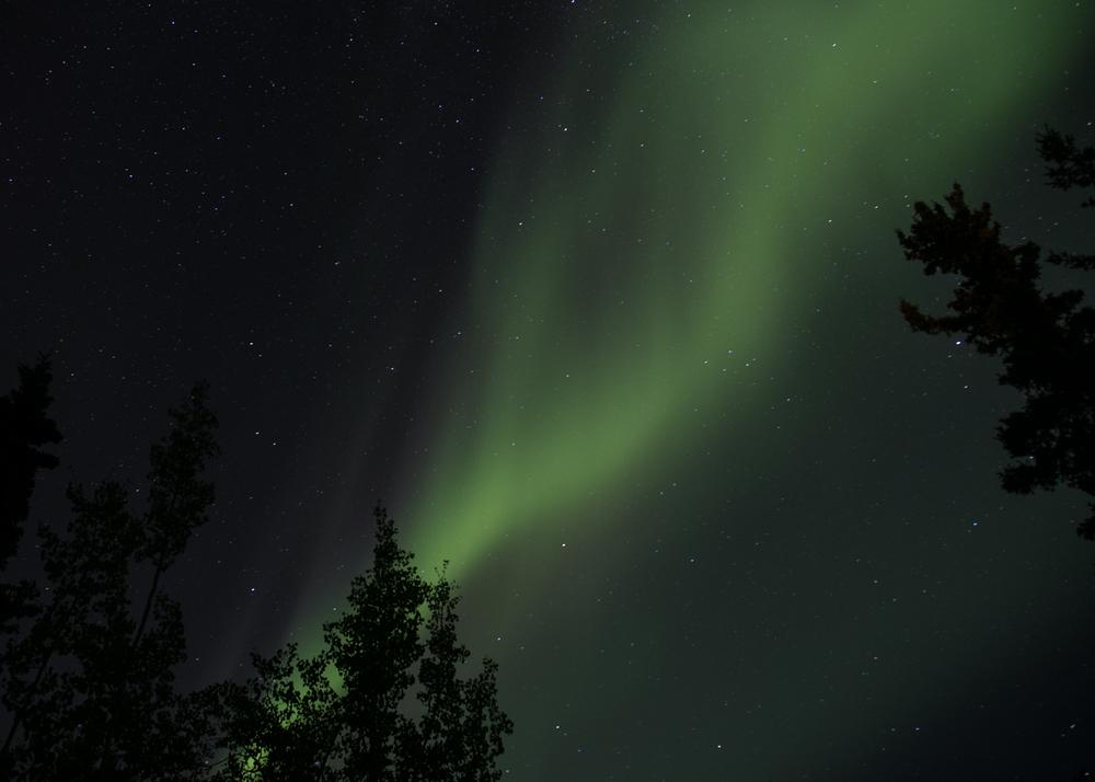 Yukon D14-42.jpg