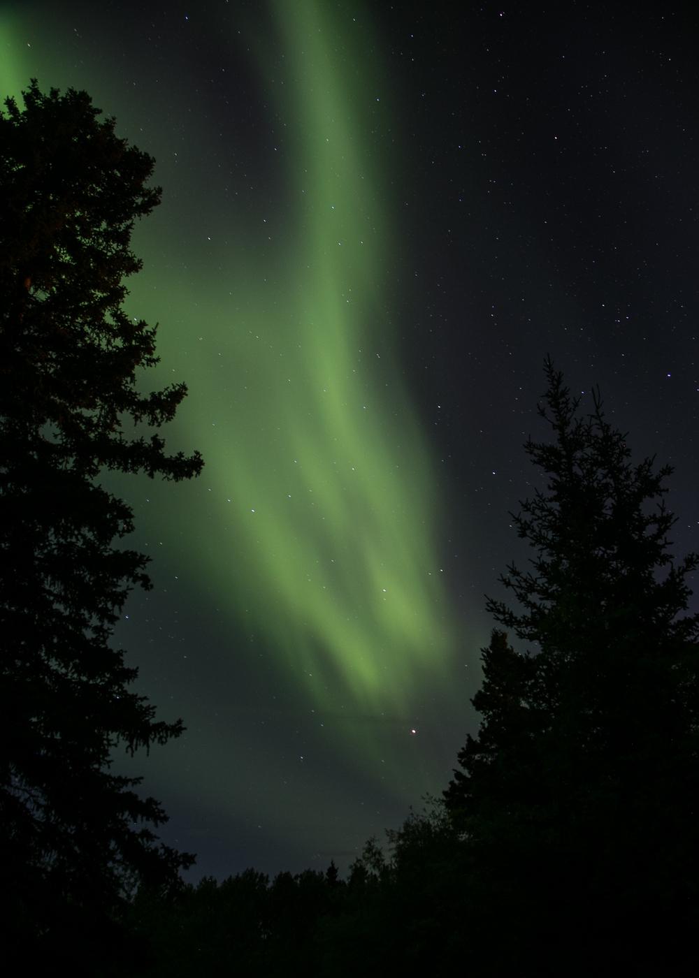 Yukon D14-43.jpg