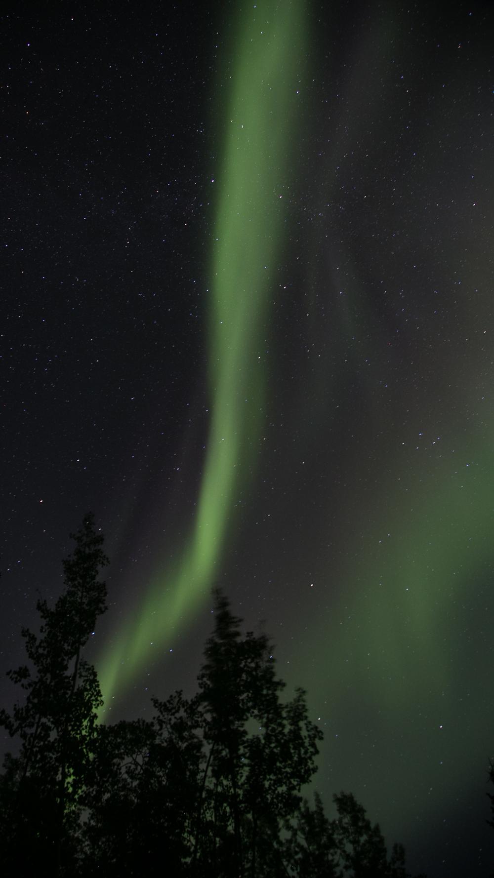 Yukon D14-44.jpg