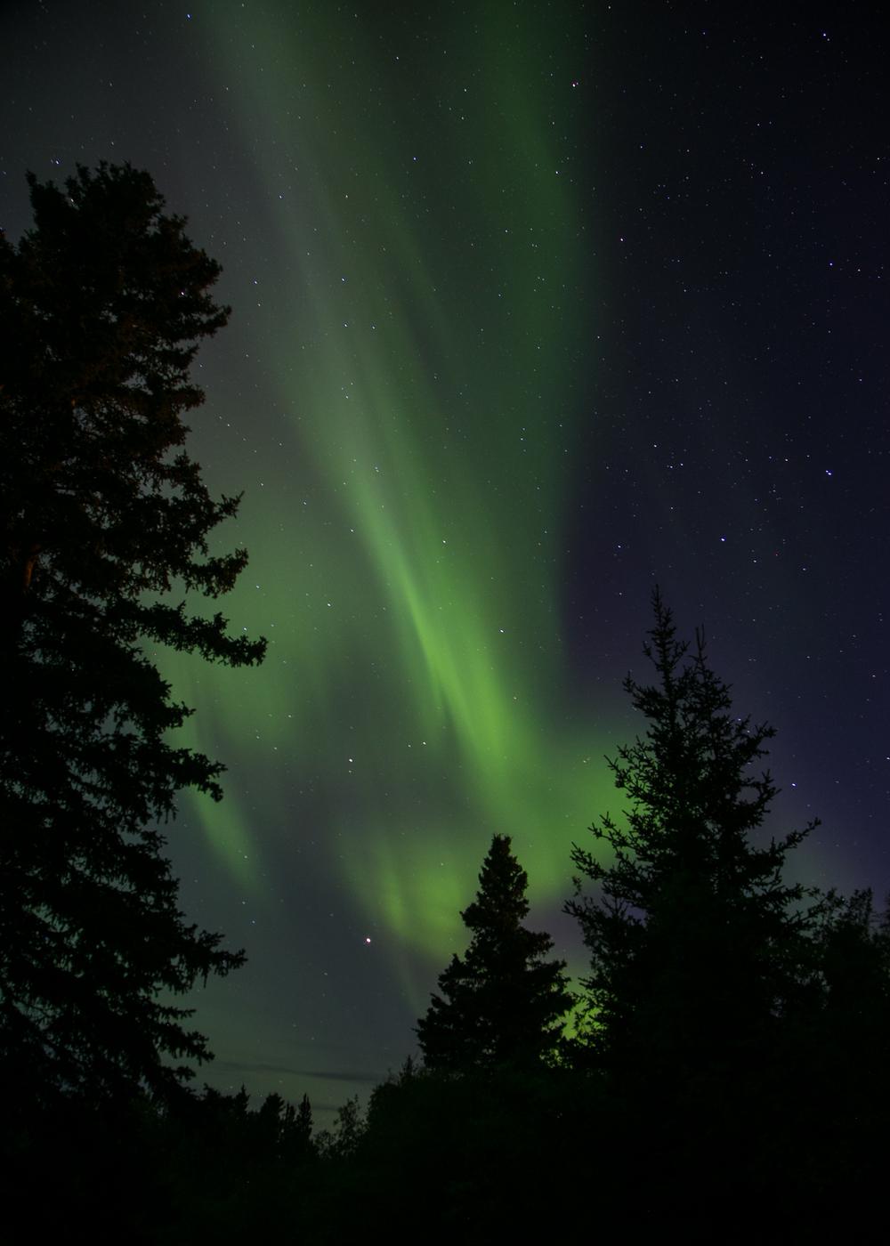 Yukon D14-47.jpg