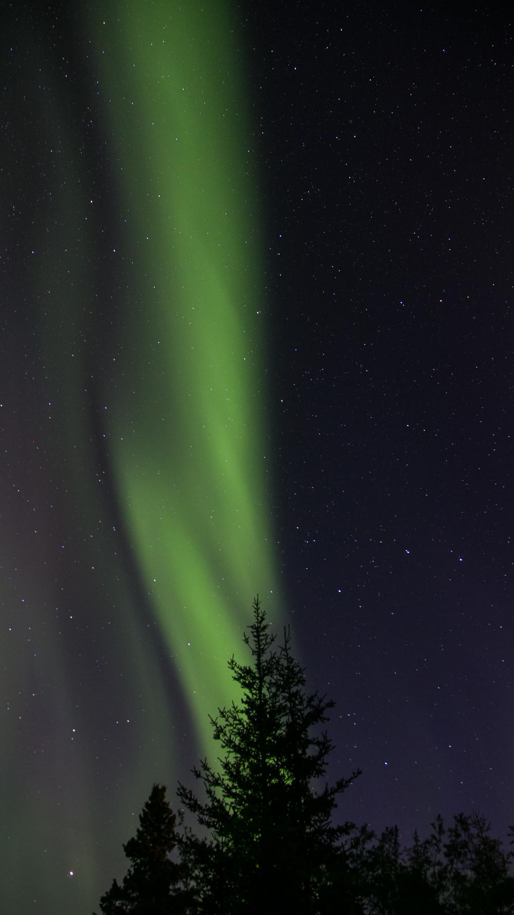 Yukon D14-48.jpg