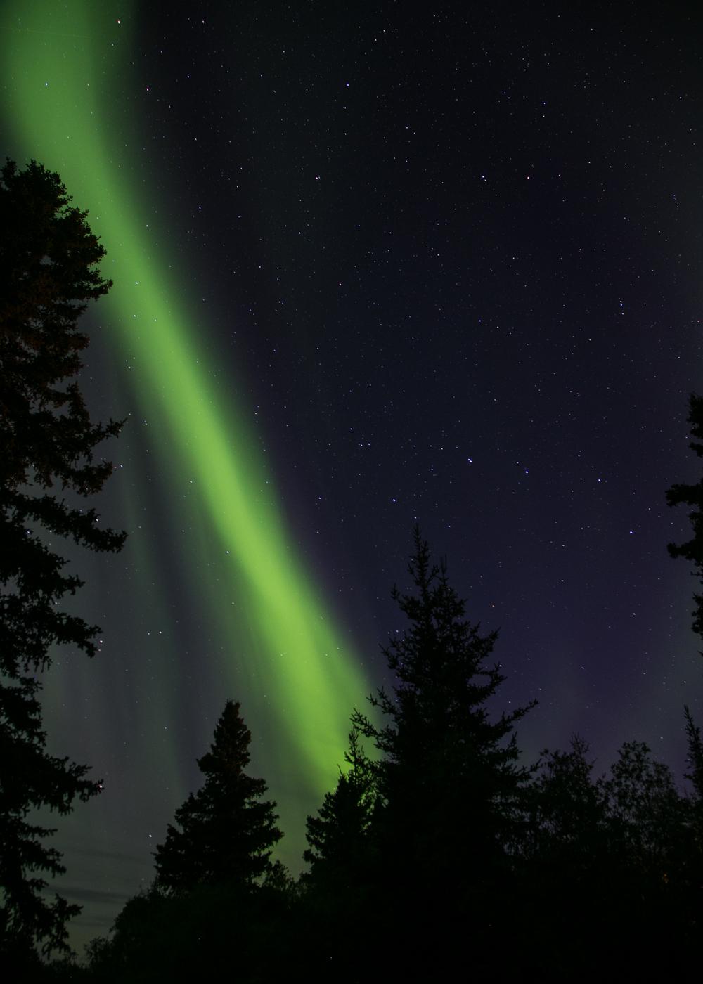 Yukon D14-49.jpg