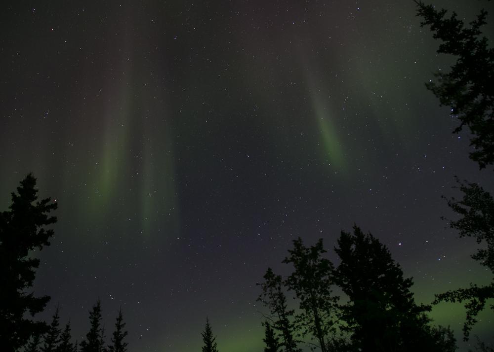 Yukon D14-55.jpg