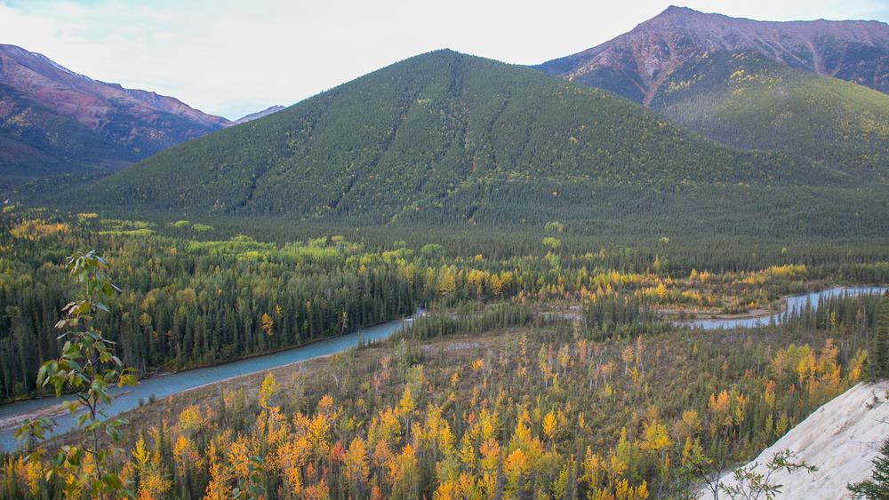 Yukon D16-7.jpg