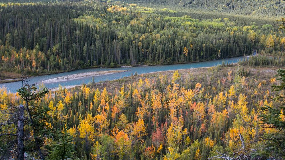 Yukon D16-13.jpg