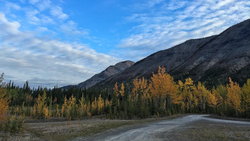 Yukon D16-26.jpg