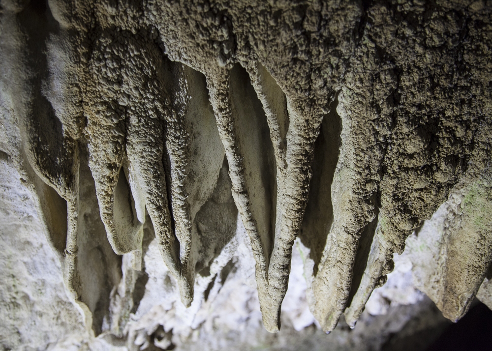 There were many interesting formations in the cave system.