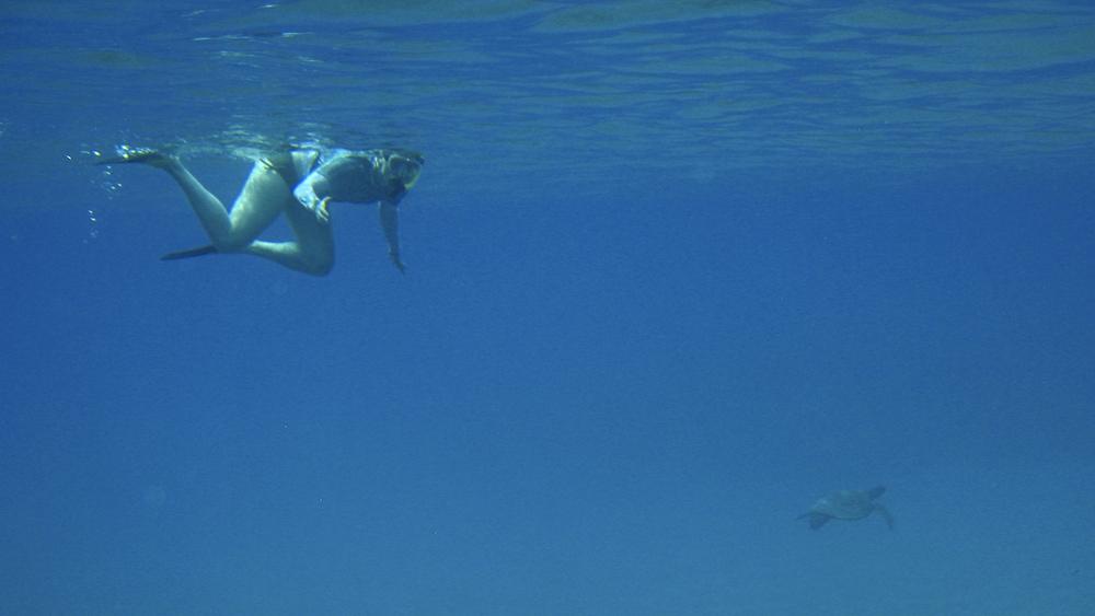 2012 02 Snorkling II-12.jpg