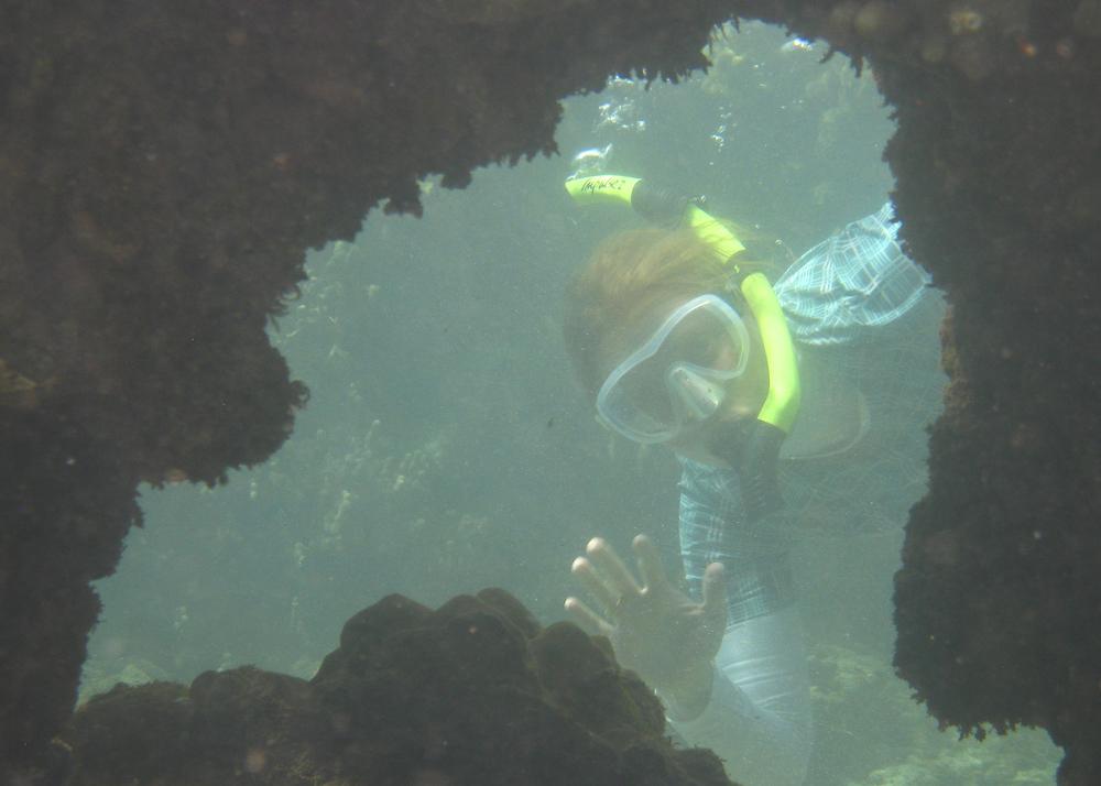 2012 02 Snorkling II-21.jpg