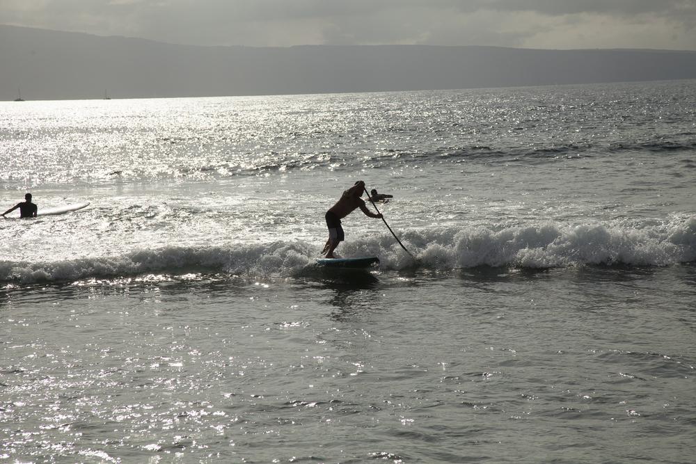 2012 02 Westine Maui-9.jpg