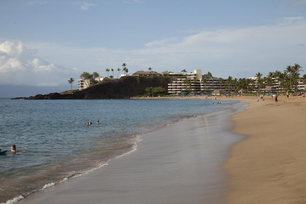 2012 02 Westine Maui-14.jpg