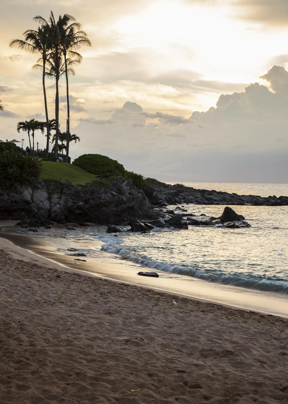 2012 02 Westine Maui-18.jpg