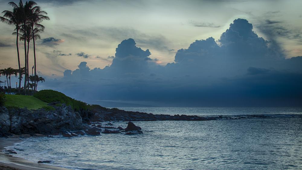 2012 02 Westine Maui-21.jpg