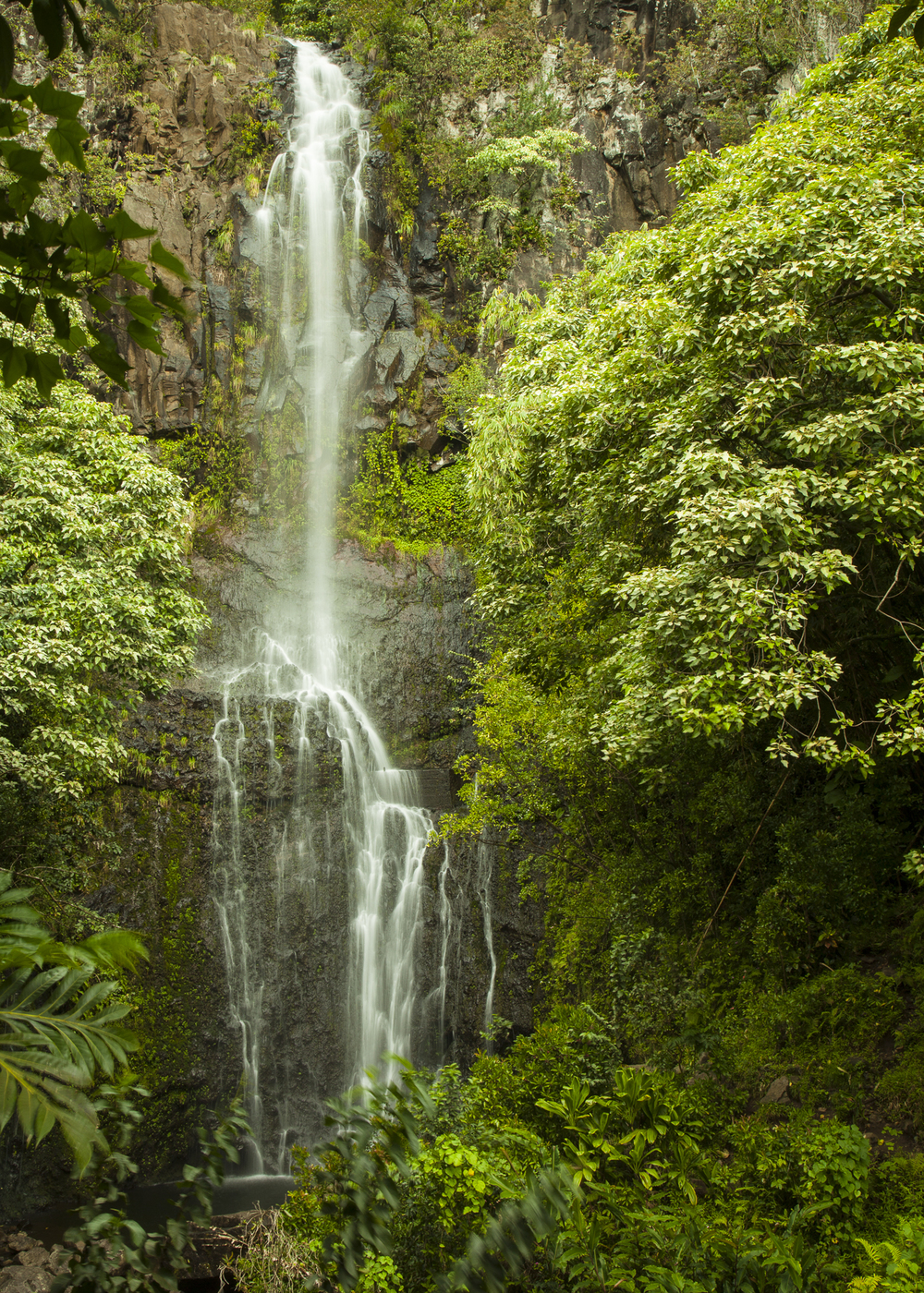 All along the road to Hana, there are waterfalls that you can stop to see.