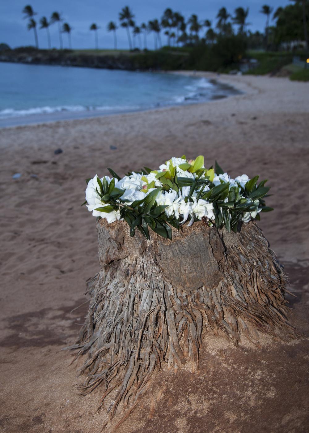 2012 02 Pre Wedding Photos-15.jpg
