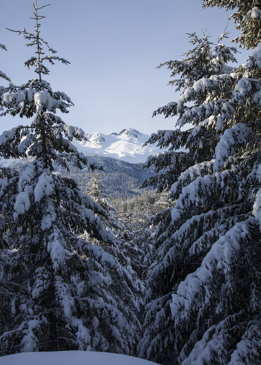 2012 01 Snowshoeing-1.jpg