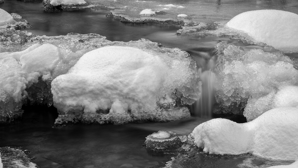 2012 01 Snowshoeing-7.jpg