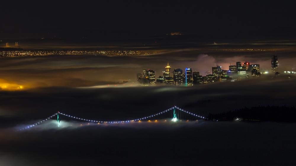 2012 02 Fog-2.jpg