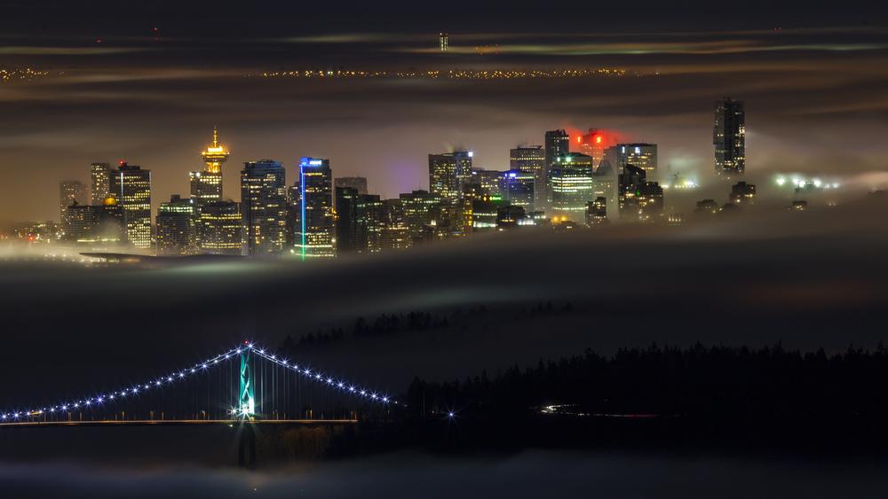 2012 02 Fog-3.jpg