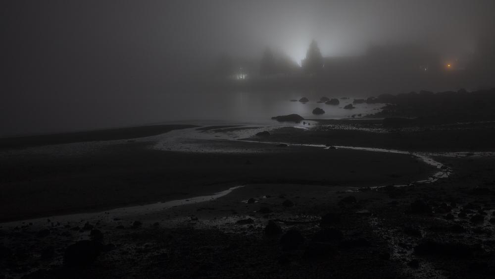 2012 02 Fog-6.jpg