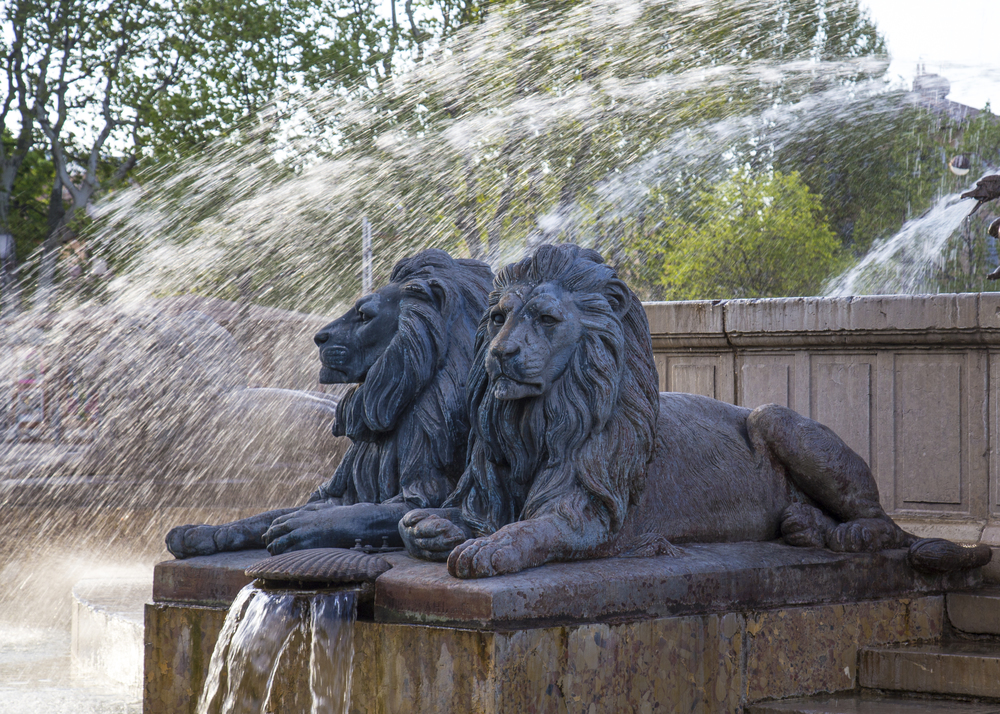 A detailed look at the lions.