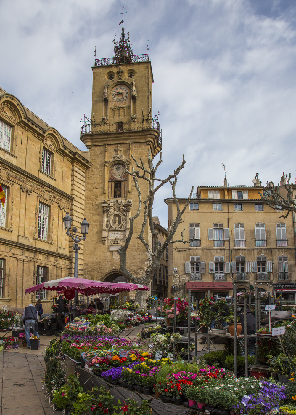 The Aix City Hall, and a flower market on a Saturday morning.