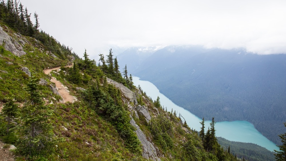 I love this view - the trail winding along the ridge, with an almost full view of Cheakamus Lake.