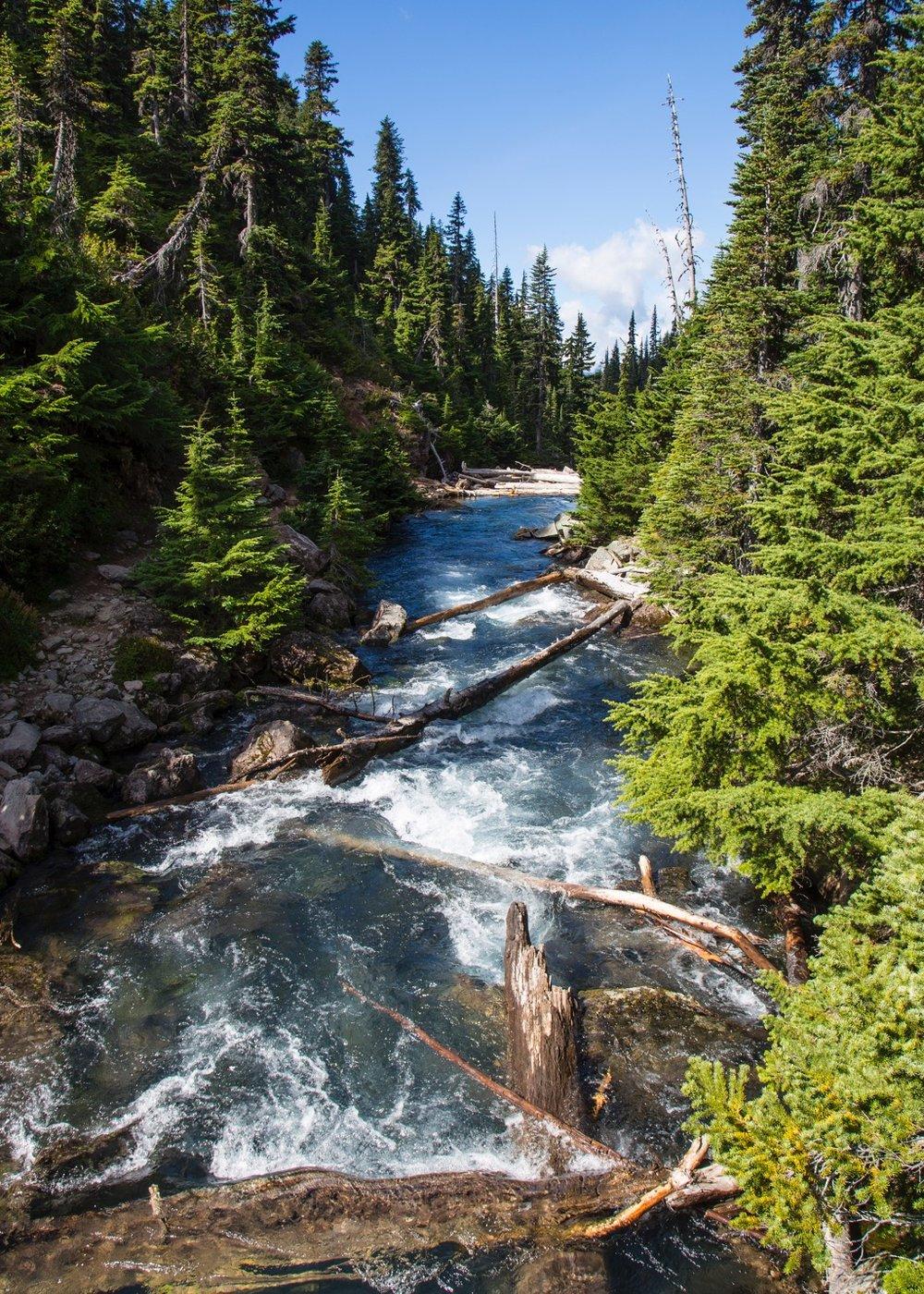 We had to cross over a bridge where a river empties Garibaldi Lake down to Lesser Garibaldi Lake.