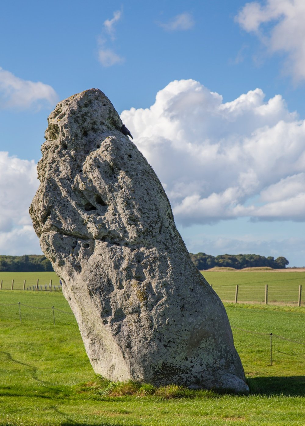 The Heel Stone is a single large block of sarsen stone standing within the Avenue outside the entrance of the Stonehenge earthwork, close to the main road.