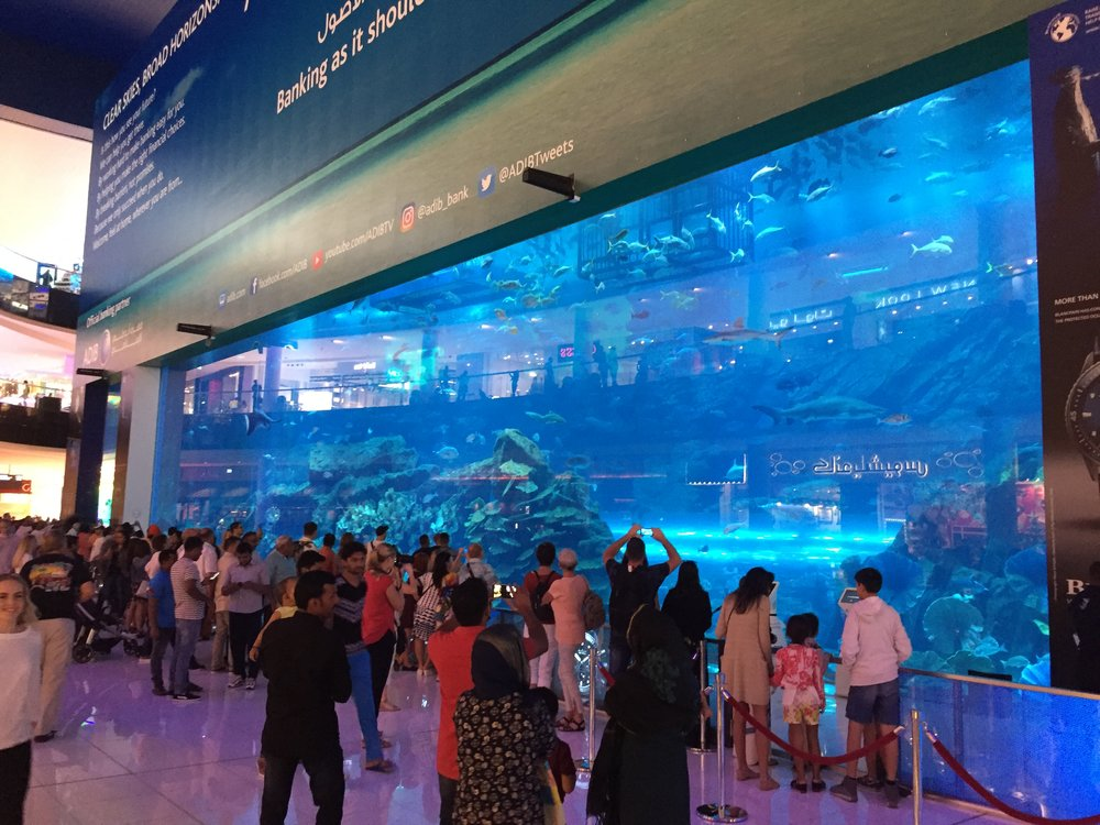 The Dubai Aquarium in the Dubai Mall