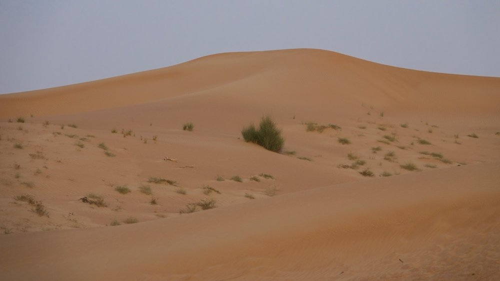 Bur Dubai - 6.jpg