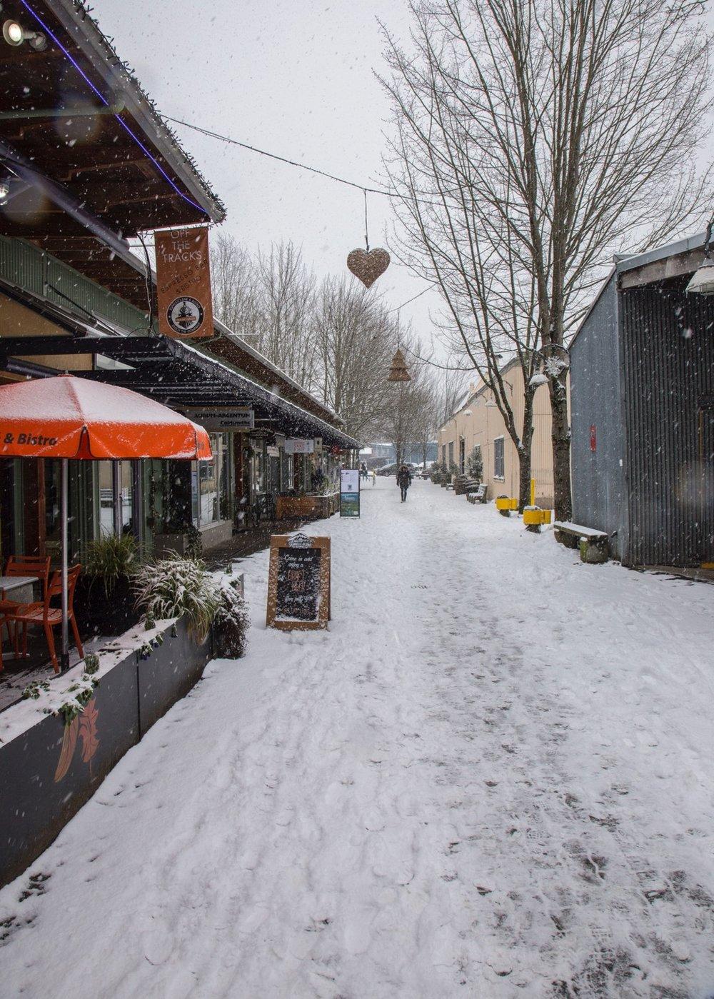 Winter Wonderland - 10.jpg