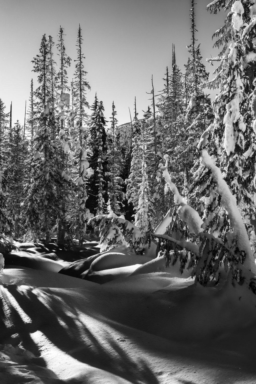 Callaghan Snowshoeing - 7.jpg